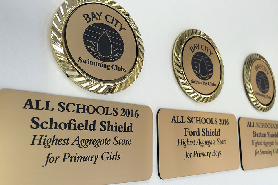 engraved-custom-logo-and-plates-ready-for-plaque